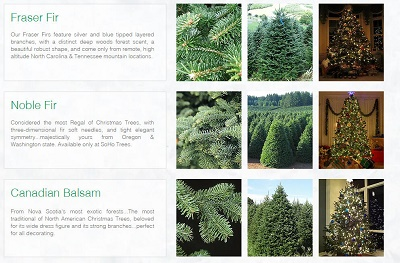 Long Island And Nearby Nyc Christmas Tree Farms Choose And Cut