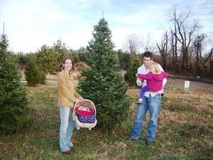 mr tree farm christmas trees you choose and you cut precut christmas trees living christmas trees to plant later christmas themed park christmas - Christmas Tree Farms In Ohio