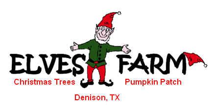 elves christmas tree farm and pumpkin patch