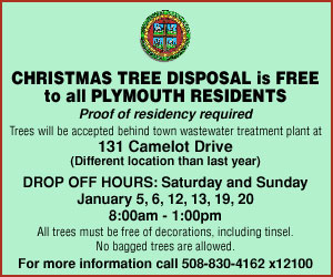 Massachusetts Where And How To Recycle Your Christmas Tree After